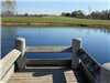 Dock on Pond